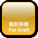 脂肪移植中心