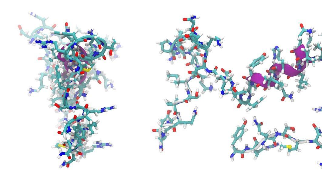 胜肽是由許多胺基酸組成的