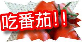 減肥方法:蕃茄減肥法