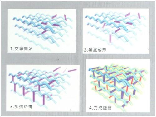 水微晶獨特的CHAP專利,令其有更持久的填充效果