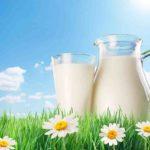 Line 新聞「喝牛奶可降血壓、月瘦4公斤」是真的嗎?
