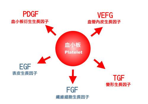 prp,prp 醫美,prp 生長因子,醫美 prp,血小板 prp,prp 離心機,生長因子注射,血小板血漿治療富含生長因子的血小板1