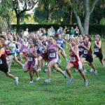 慢跑可以訓練紅肌
