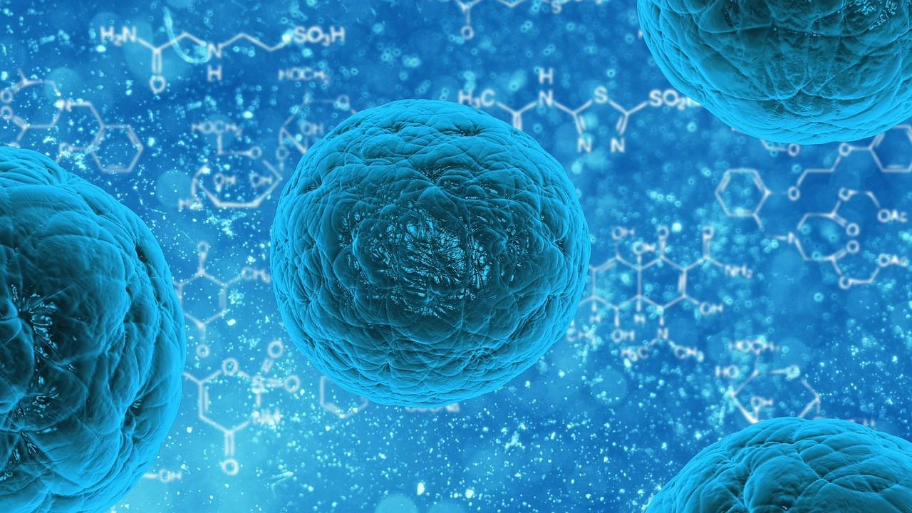 幹細胞妙用多
